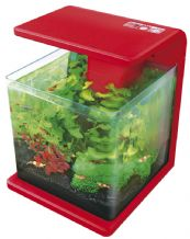 Superfish Wave 15 Fish Tank Red